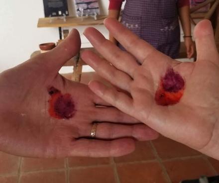 cochineal hand